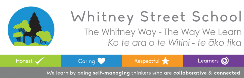 Our Vision, Whitney Street School